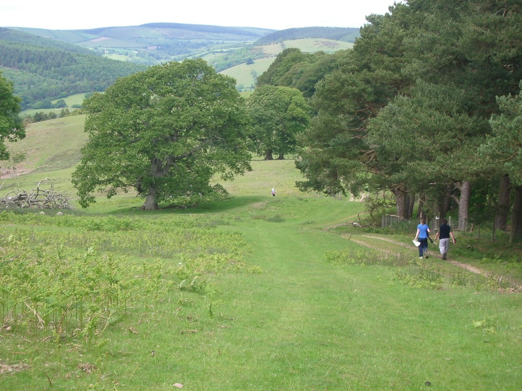 View from the woods at Brampton Bryan.